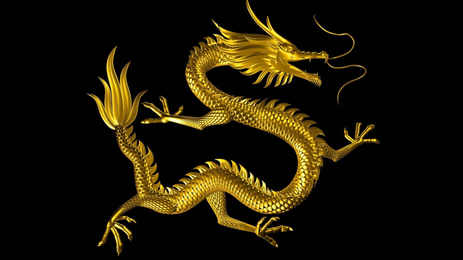 """Live Dragon Tiger"" kazino technologija"