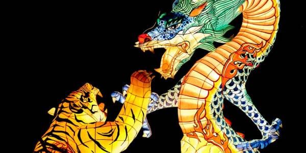 """""""Drakono tigras"""": populiarus tiesioginis kazino žaidimas"""
